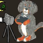 Diego Kamera