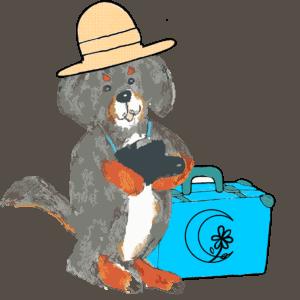 Diego reisen