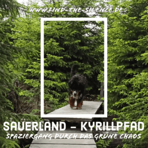 Kyrillpfad Sauerland