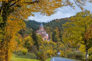 Schloss Zwingenberg!